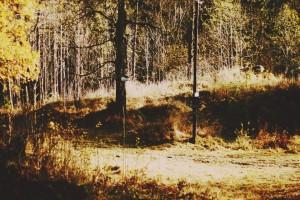 Autumn finale